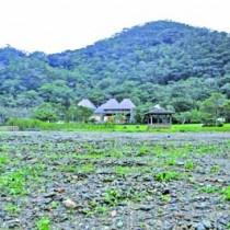 マミノクロウサギ研究飼育施設の建設予定地=7日、大和村思勝