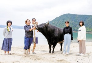海岸で闘牛「雷神」を散歩させる三原さん家族ら。その様子を見つけ、すぐに観光客や住民が集まった=20年12月13日、瀬戸内町