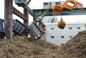 製糖シーズンが始まり工場に搬入されたサトウキビ=15日、徳之島町徳和瀬