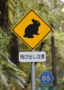 アマミノクロウサギの交通事故防止を呼び掛ける標識=奄美大島
