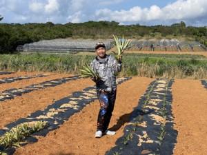 苗定植後のパイン畑でオンライン村への参加を呼び掛ける吉見さん=12月13日、東村