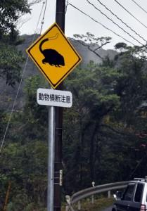 県道に設置されたケナガネズミの交通事故防止を呼び掛ける標識=奄美大島