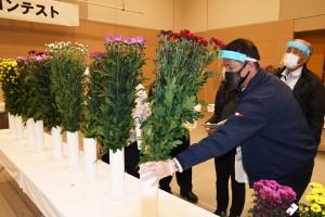 出品された切り花を入念に審査する関係者=4日、鹿児島市