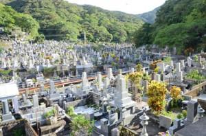 21年度から市有区画の貸し出しを計画している永田墓地=奄美市名瀬