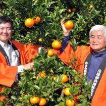 たわわに実ったタンカンを手に笑顔を見せる園主の平井さん親子=1日、奄美市名瀬