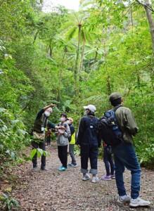 認定ガイドと国有林の金作原を散策する子どもたち=6日、奄美市名瀬