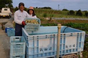 東日本大震災の津波で流出したとみられるコンテナを大切に使っている里光川悦さん、キミエさん夫妻=8日、与論町古里