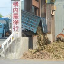 搬入最終日を迎えた南西糖業㈱徳和瀬工場=5日、徳之島町