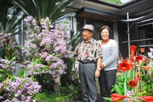 自宅の庭いっぱいに咲き誇るデンドロビュームを紹介する池田夫妻=3日、奄美市名瀬小宿里