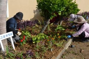 ボランティアで花を植える与論町商工会女性部の会員たち=2日、同町
